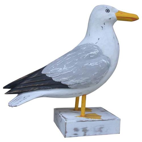 Seagull bird model